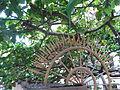 HK Sheung Wan Po Hing Fong green tree fence Aug-2012.JPG