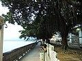 HK TM Tuen Mun Promenade 2.JPG