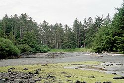 A former Haida village at the site