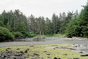 Gwaii Haanas National Park Reserve and Haida Heritage Site - A former Haida village at the site