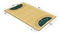 Handball Court Dimensions.jpg