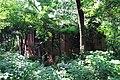 Hangzhou Zhijiang Daxue 20120518-29.jpg