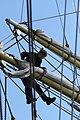 Hanse Sail 2011 (6385955789).jpg