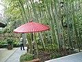 Hasedera Bamboo Umbrella.jpg