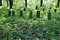 Havlíčkův-Brod-tyfový-hřbitov2013c.jpg