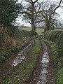 Heatley Back Lane - geograph.org.uk - 1136662.jpg