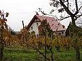 Hegymagas, 8265 Hungary - panoramio (2).jpg