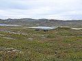 Helberghytta Våervatn Norwegen 2013.jpg