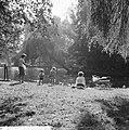 Herfsttij in Amsterdams Vondelpark, Bestanddeelnr 918-2133.jpg