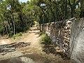 Heybeliada - panoramio (15).jpg
