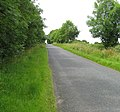 High Haden Road away from Glatton - geograph.org.uk - 1800038.jpg