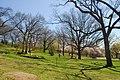 High Park, Toronto DSC 0226 (17393635295).jpg