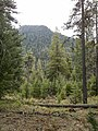 Highline Trail, Payson, Arizona - panoramio (3).jpg