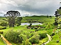 Hobbiton, The Shires, Middle-Earth, Matamata, New Zealand - panoramio (8).jpg