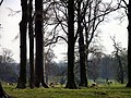 Holkham Hall Park, Norfolk - geograph.org.uk - 320396.jpg