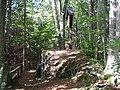 Hopferbach - panoramio (6).jpg