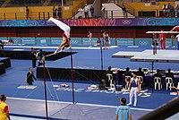 HorizontalBar-YOGArtisticGymnastics-BishanSportsHall-Singapore-20100816-01a.jpg