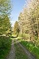 Horn-Bad Meinberg - 2015-05-04 - LIP-004 Naptetal (03).jpg