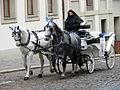 Horse-Drawn Carriage and Driver - Prague - Czech Republic.jpg