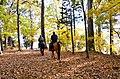 Horseback riding at Staunton River State Park (15742637936).jpg