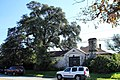 House and tree seguin.jpg