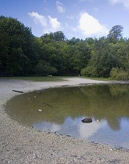 Humber Bridge Country Park pond - geograph.org.uk - 2062680