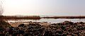 IJsselmeerkust Mirns. Locatie Mirnser Klif 03.JPG