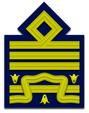 Greca (insignia) - Image: IT Airforce OF 9