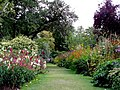 In Cawdor Castle gardens. - geograph.org.uk - 1478390.jpg