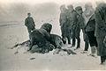 Infanterie-Regiment 489 Pferdenotschlachtung Winter-1942 by-RaBoe..jpg