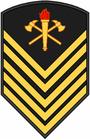 Insignia BM P1.PNG
