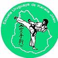 Insignia oficial de KARATE JITSU TAKAYA RYU SHIRO ATOSHI.jpg