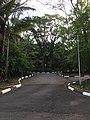 Instituto Butantã - O Parque ocupa uma extensa área -14E4F949-7948-4F47-9579-36683D1D915A.jpg