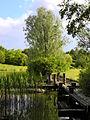 Irchelpark 2012-05-16 18-34-12 (P7000).JPG
