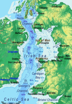Relief Map Of Hong Kong Island