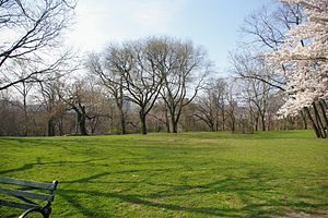 Isham Park - Isham Park's central lawn, at the top of the hill (April, 2010)