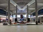 Istanbul Airport ISL D finger.jpg