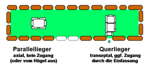 Harhoog - Layout of the Harhoog dolmens with parallel and transverse graves