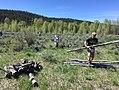 Jackson Hole Wildlife Fdn removing fences 2017.jpg
