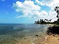 Jaffna sea.jpg