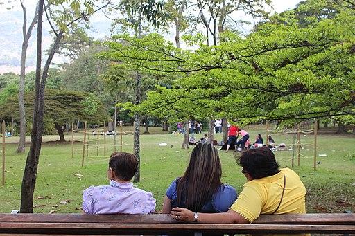 Jardín botánico de Medellín Museums in Medellin
