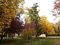 Jardín del Príncipe - panoramio (14).jpg
