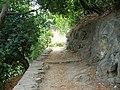 Jardin Romieu (Bastia) (2).jpg
