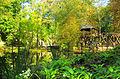 Jardin de Léonard 8.jpg