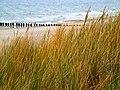 Jesienna impresja - panoramio.jpg