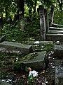 Jewish cemetery Szydlowiec 26415098.jpg