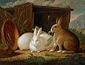 Johann Wenzel Peter - Drei Hasen in einer Landschaft.jpg