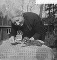 Jonge panters geboren in dierentuin te Arnhem, Bestanddeelnr 910-2705.jpg