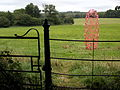 Julian Wild System No. 24 2008, Fence and Gate. Ragley Hall.jpg