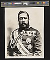Kalakaua (PPWD-15-4-017, original).jpg
